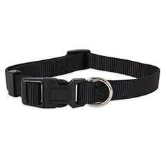 ASPEN PET PRODUCTS 15710 Nylon Adjustable Collar 10-Inch Black