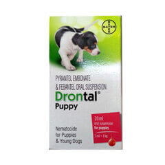 Bayer Drontal Puppy Oral Suspension Dewormer 20 ml
