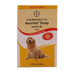 Bayer Asuntol Soap 75 GM (Pack of 4)