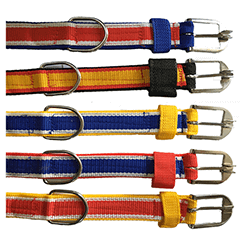 Multi Color 3 Ply Dog Collar