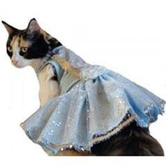 Blue Princess Cat Dress