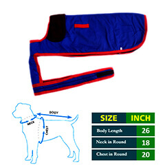 Dog Coat Blue with Brown Collar 26No