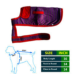 Dog Coat Violet Blue Grew Strips with Red Collar 16 No