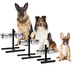 Dog Feeding Station With 2 Removable Bowls