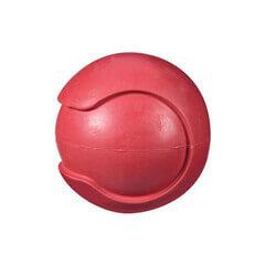 JW Pet Company iSqueak Bouncin' Baseball Dog Toy Large (Colors Vary)