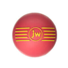 JW Pet the iSqueak Ball Dog Toy Medium