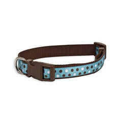Aspen Pet Products Petmate Adjustable Collar blue & black
