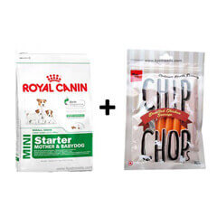 ROYAL CANIN MINI STARTER 3KG+Free Dog Snacks