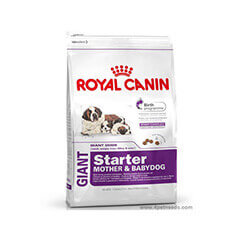 Royal Canin Giant Starter 1 KG Dog Food