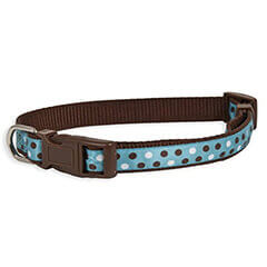Aspen Pet Products Petmate Adjustable Collar