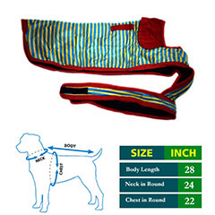 Dog Coat Blue Yellow Strips with Red Collar 28 no