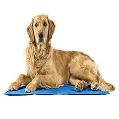 cooling pet pad