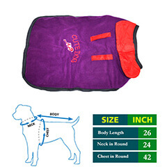Cute Dog Purple with Red Collar 26 no