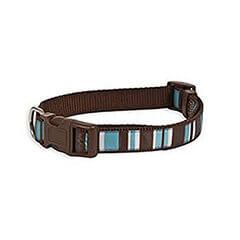 Aspen Pet Delicious Stripes Collar 3/4''X14-20
