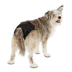 Washable Diaper for Dogs
