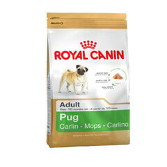 Royal Canin Pug Adult 1.5 KG Dog Food