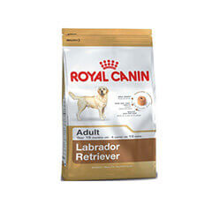 Royal Canin Labrador Adult 12 KG Dog Food