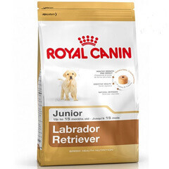 Royal Canin Labrador Junior 12 KG Dog Food