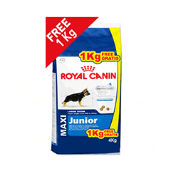 Royal Canin Maxi Junior 3 KG Dog Food
