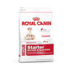 Royal Canin Medium Starter 4 KG Dog Food