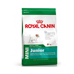 Royal Canin Mini Junior 4 KG Dog Food