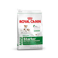Royal Canin Mini Starter 1 KG Dog Food