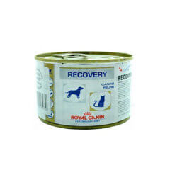 ROYAL CANIN RECOVERY CAN 195 GM