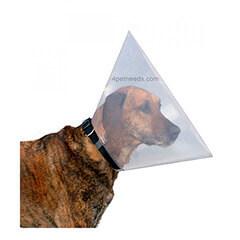 Trixie Protective Dog Collar Small