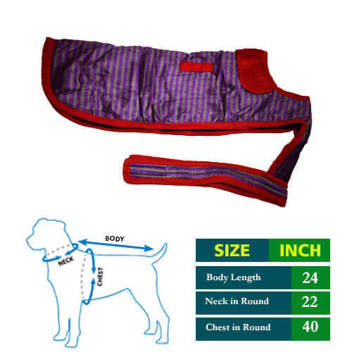 Dog Coat Violet Grew Strips with Red Collar 24no